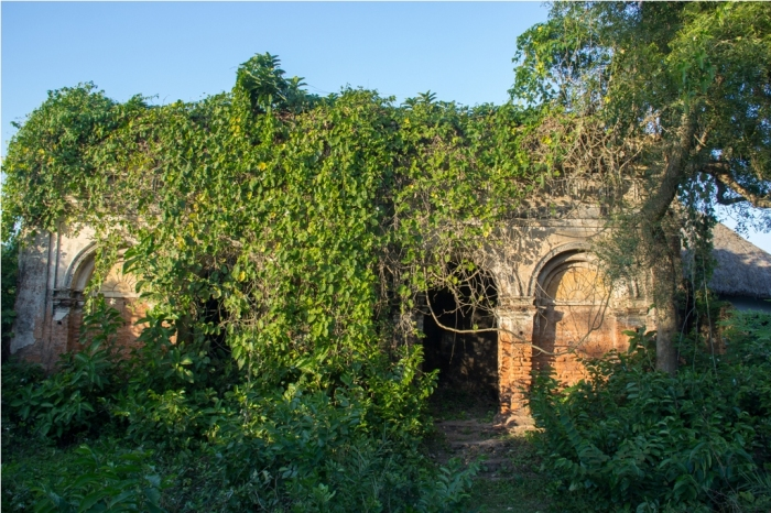 Another Old temple, covered in vines
