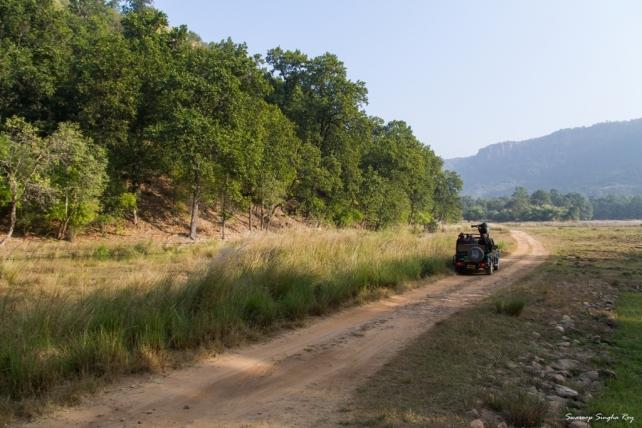 Tala Zone Bandhavgarh Gypsy