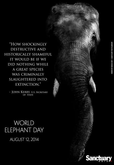 Photograph published in Sanctuary Asia Magazine and used for #SAWorldElephantDay 2014 Campaign.