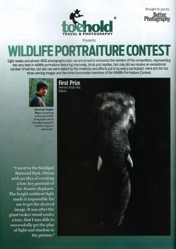 Won the first prize in Wildlife Portraiture contest organised by Toehold and Better Photography magazine.
