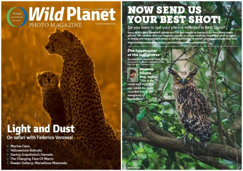 "Photograph of ""Buffy Fish Owl"" published Wild Planet Magazine, February 2016 issue."