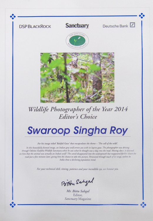 Editor's Choice in Sanctuary Asia Wildlife Photographer of the Year 2014