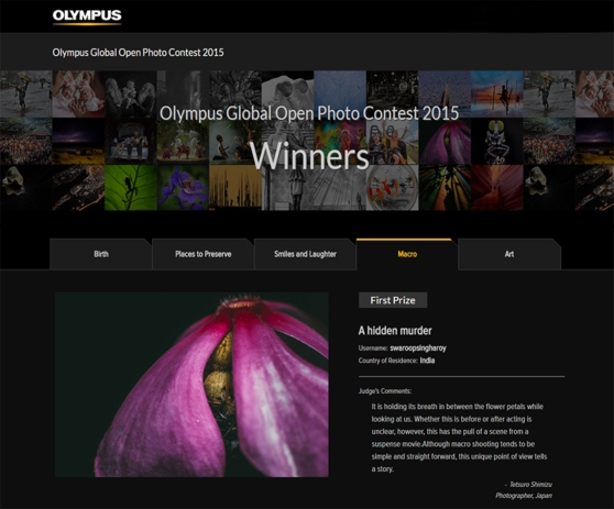 First prize in Macro Category of Olympus Global Photo Contest 2015