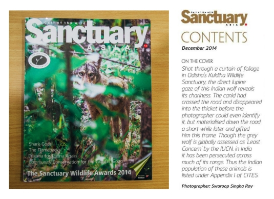 Cover Image in Sanctuary Asia, December 2014 Issue