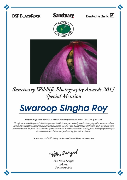 Special Mention in Sanctuary Asia Wildlife Photography Awards 2015